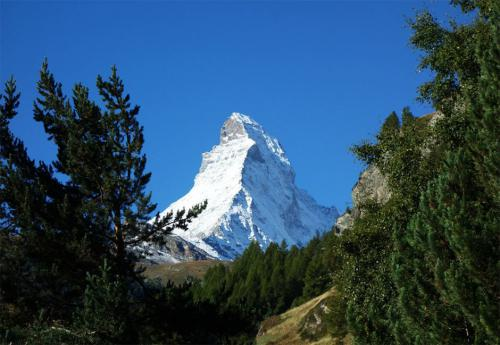 fxtm-organises-corporate-mountain-trip-along-the-swiss-alps-1