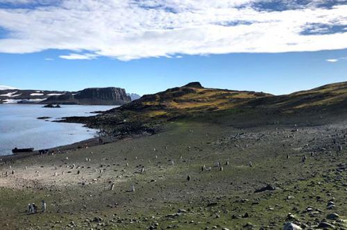 poezdka-v-antarktidu-6