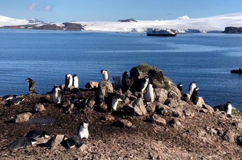 poezdka-v-antarktidu-8